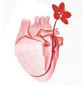 Congresso annuale per cardiologi di Puglia e Basilicata  sulle malattie cardiovascolari