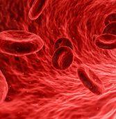 Emotrasfusione infetta e risarcimento del danno agli eredi